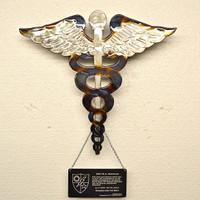 American Liquid Metal - Medical Branch Insignia Sign