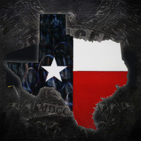 Texas State American Liquid Metal Flag Sign