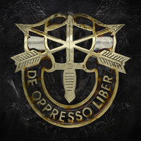 American Liquid Metal - Special Forces Sign