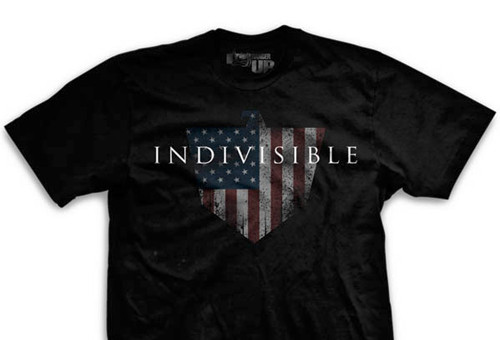 Indivisible Ultra-Thin Vintage T-Shirt