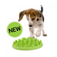 Green, Interactive Slow Food Bowl for Dogs