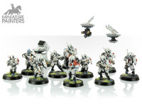 SILVER Fire Warriors Strike Team