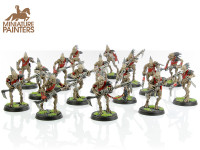 BRONZE Kroot Carnivore Squad
