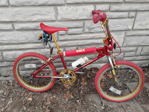"20"" Free Spirit ""Track Certified"" BMX Bicycle"