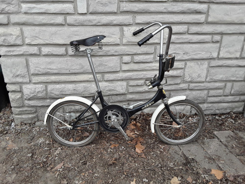 "20"" Silk Folding Bicycle"