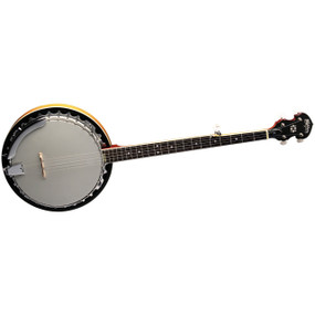 Washburn B9 5-String Resonator Banjo, Gloss Sunburst