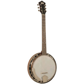 Recording King RK-G25-BR Madison 6-String Resonator Banjo (RK-G25-BR)
