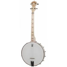 Deering Goodtime 17-Fret Tenor 4-String Open Back Banjo, Natural - Made in the USA (GDT-G17)