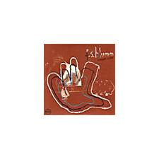 """F.S. Blumm - Summer Kling LP - 12"""" Vinyl"""