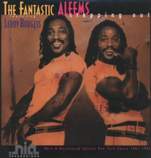 """The Fantastic Aleems - Stepping Out - 12"""" Vinyl"""