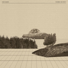1000 Names - Invisible Architect - 2x LP Vinyl