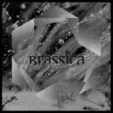 """Brassica - Temple Fortune - 12"""" Vinyl"""