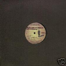 "5% Nation Of Casiotone - Disko Blackout - 12"" Vinyl"
