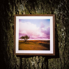 Faint Wild Light - Faint Wild Light - LP Vinyl