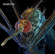 Skeetaz - Skeetaz - CD