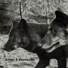 Barker & Baumecker - Transsektoral - 2x LP Vinyl