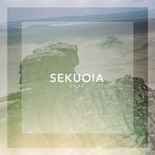 "Sekuoia - Trips - 12"" Vinyl"