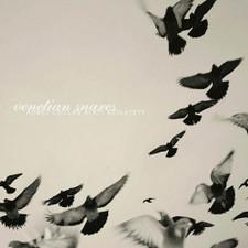Venetian Snares - Rossz Csillag Alatt Szuletett RSD - 2x LP Colored Vinyl