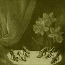 Alice Cohen - Into the Grey Salons - LP Vinyl