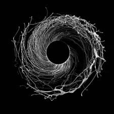 Dawn Of Midi - Dysnomia - 2x LP Clear Vinyl