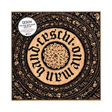 Ceschi - The One Man Band Broke Up - LP Vinyl