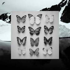 "Christian Loffler - Young Alaska - 12"" Vinyl+7"""