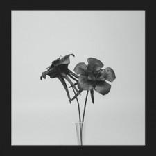 """Jlin - Dark Lotus - 12"""" Vinyl"""