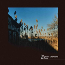The Cinematic Orchestra - Ma Fleur RSD - 2x LP Colored Vinyl