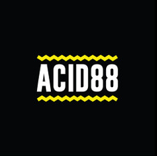 DJ Pierre - Acid 88 RSD - 2x LP Vinyl