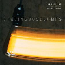 The Playlist - Chasing Goosebumps - 2x LP Vinyl