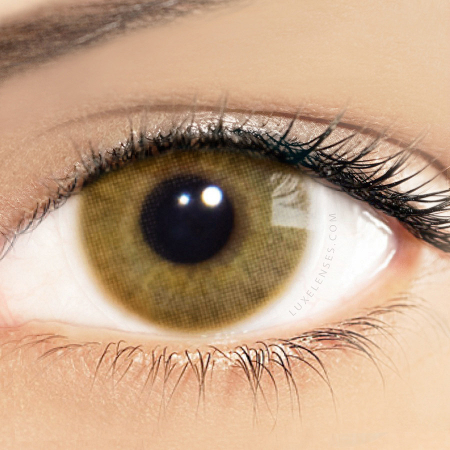 Shop solotica brazilian color contact lenses online new solotica hidrocor avela hazelnut one box two yearly lenses nvjuhfo Image collections