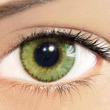 Solotica Natural Amber Green (Ambar) - One Box Two Yearly Lenses