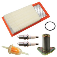 Golf Cart Engine Maintenance Kit with Oil Filter, EZGO 4-Cycle 295/350cc 94-05