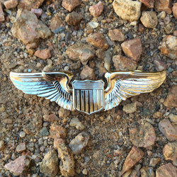 Scare Force Pilot Wings