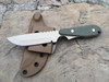 Wolf Drop point, OD Green textured G 10 Handles, Plain Edge, Desert Tan finish