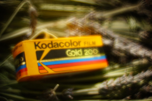 Kodacolor Gold 200 120 film (expired)