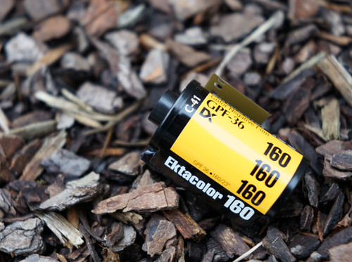Kodak Ektacolor Gold GPF 160 35mm film (expired)