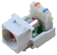 White RCA to 110 IDC Keystone Module w/ Red Insert (CA-2140R-WH)