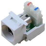 White RCA to 110 IDC Keystone Module w/ Black Insert (CA-2140B-WH)