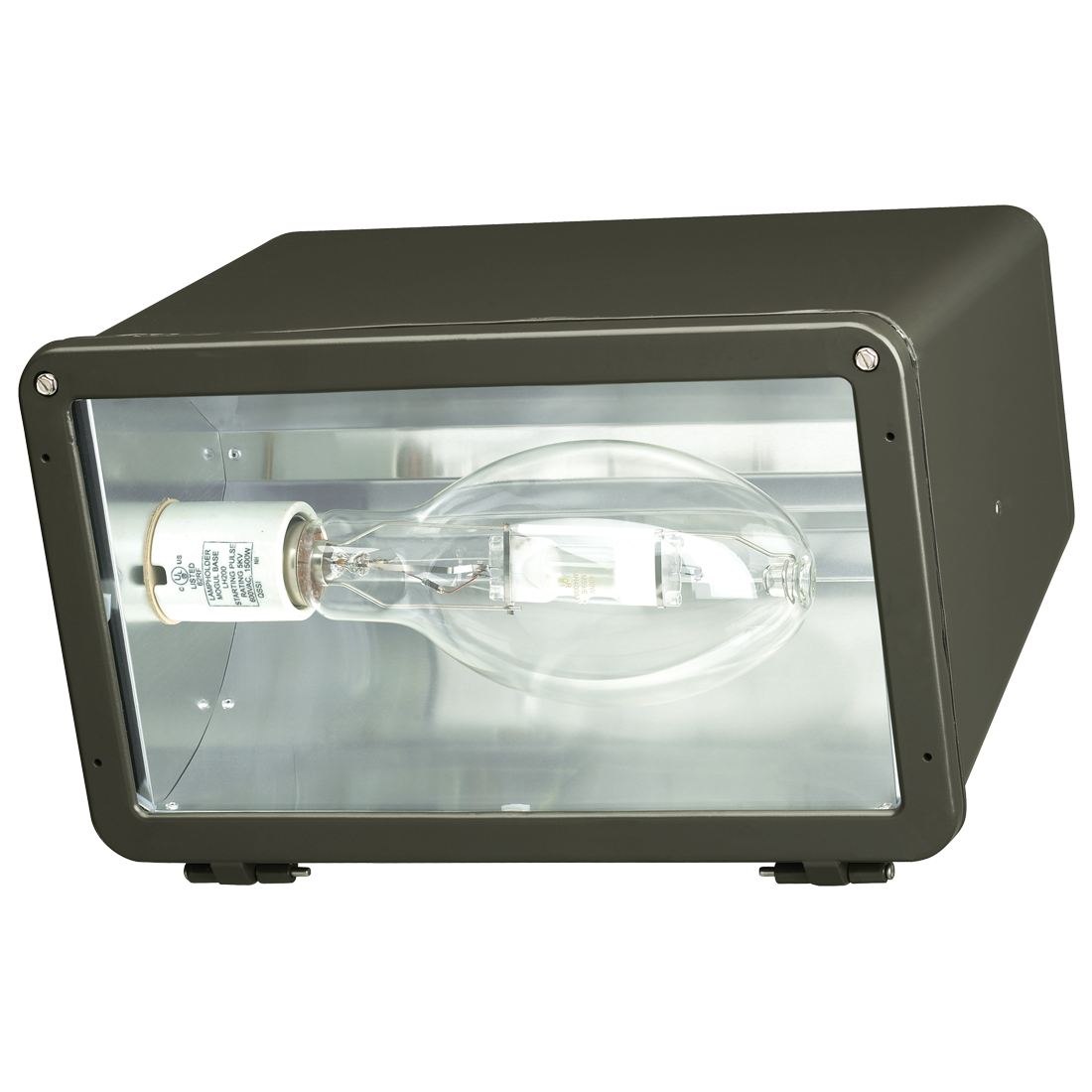 Atlas Lighting Products FLDX 250PQPK 250W Metal Halide Floodlight