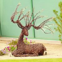 "Grapevine Resting Deer - Buck 50"" x 68"""