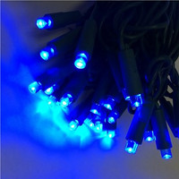 Blue LED Wide Angle Mini Light Strings - 50 Lights/25 Feet