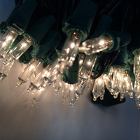"100 Clear Mini Christmas Lights, 50FT, 6"" Spacing, Green Wire, **Case of 24**"