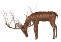 "Grapevine Deer - Eating Buck 40"" x 90"""