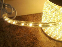 30FT of LED 2 Wire Rope Light - Color: Warm White
