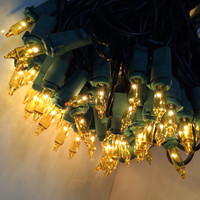 100 Yellow/Gold Mini Lights  Green Wire - Case of 24 Sets