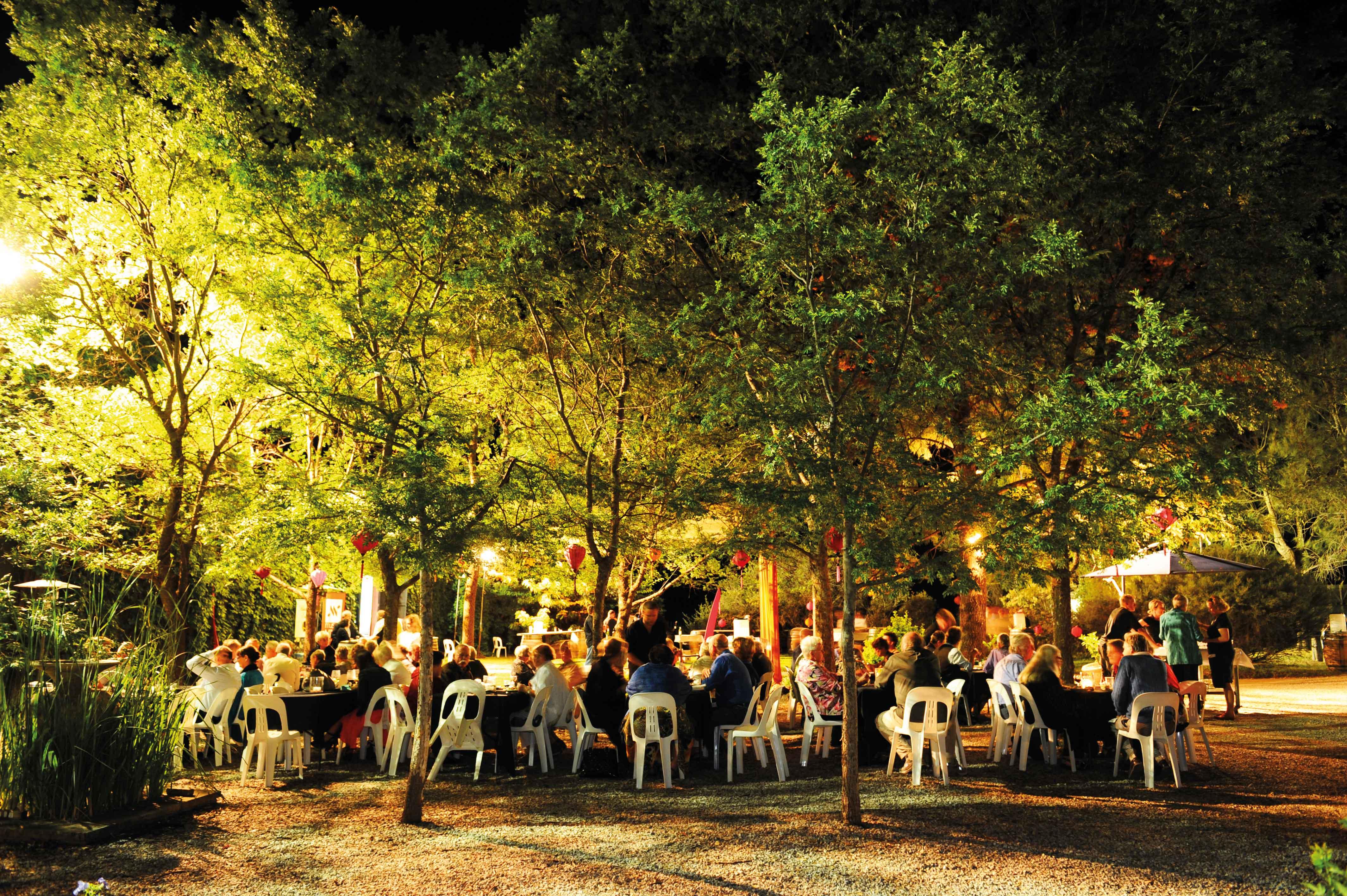 Music Festival Dinner