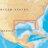 Navionics Platinum+ 907PP - Gulf Of Mexico - SD Card