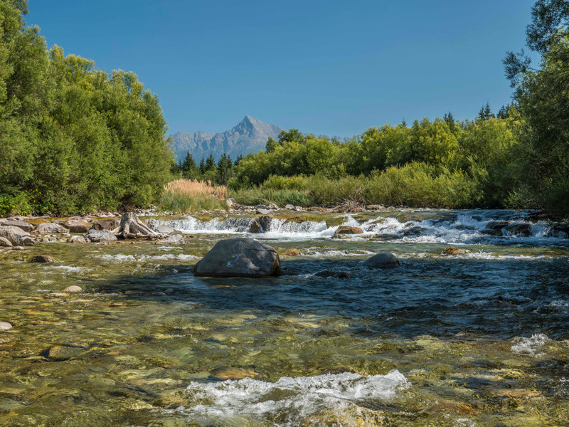 2017 World Fly Fishing Championships in Slovakia: Session two on the Bela River