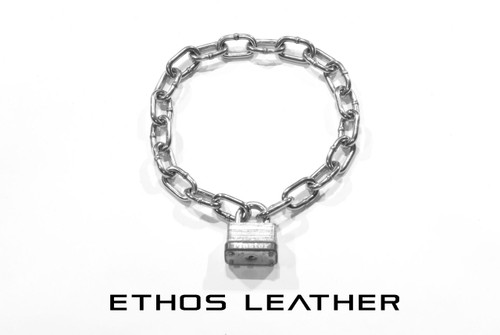 Stainless Steel Chain Collar